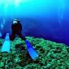 沖縄 恩納村周辺のダイビングショップ