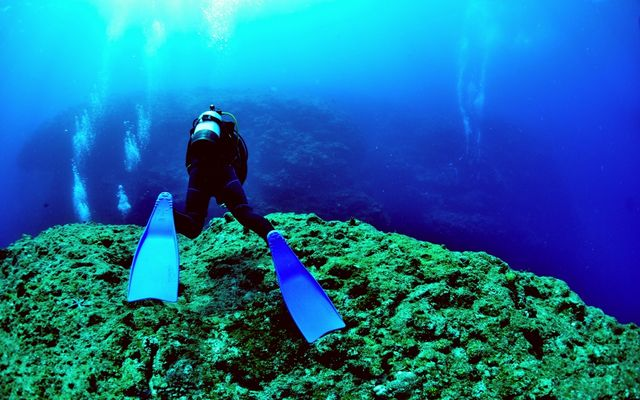 diving-shop