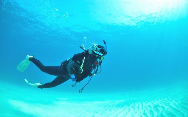 diving-feering