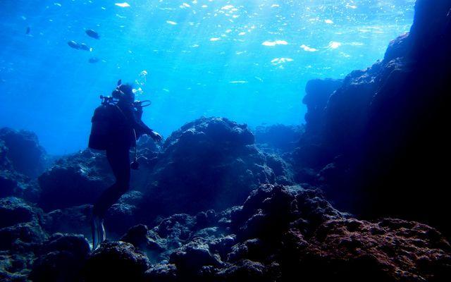 diving-lisence
