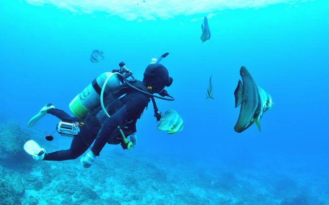diving-tools